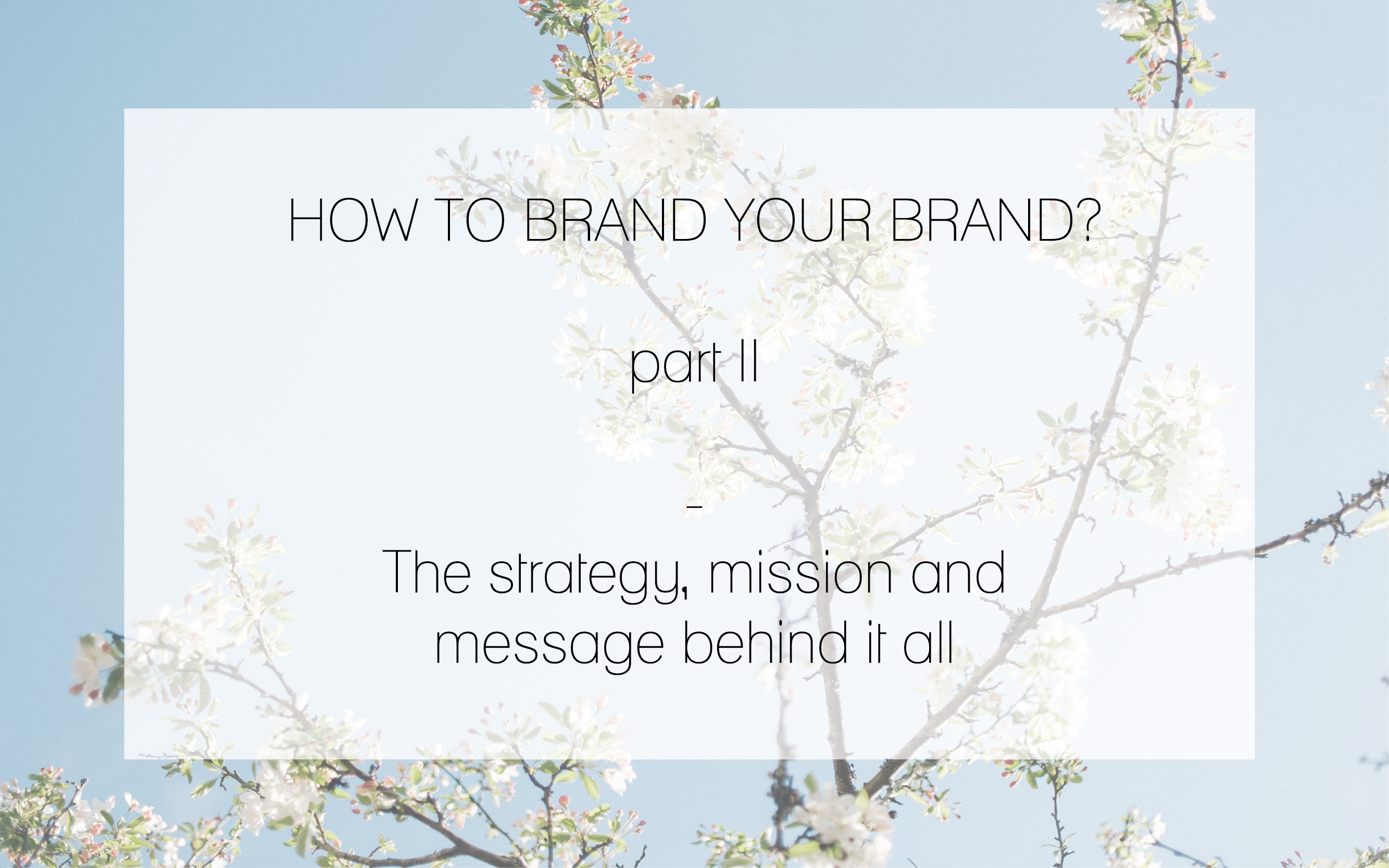 how to brand part II the strategy, mission and message